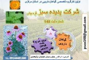 فروش نشاء گیاهان دارویی با کیفیت تضمینی و مطمئن