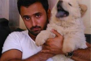 خرید و فروش تخصصی سگ های ژرمن و قفقازی