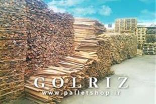 صنایع چوب و تولید پالت گلریز