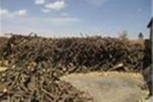 قیمت چوب مرکبات