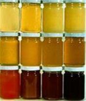 عرضه مستقیم عسل های خالص آنالیز شده آزمایشگاهی