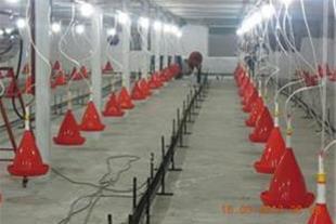 فروش مرغداری گوشتی25000 نوسازدررستم آباد