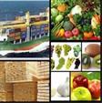 ترخیص کالا مجاز و امور حمل و نقل بین المللی