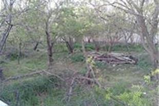 باغ باغچه شهریار