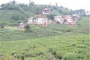 فروش زمین مسکونی در سیاهکل - زمین 300 متری