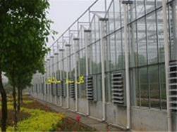 ساخت گلخانه شیشه ای طرح ونلو - 1