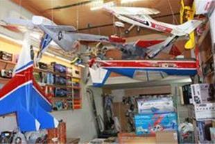 فروش هواپیما و هلیکوپتر رادیو کنترل ( مدل )