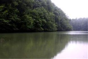 تور دو روزه دریاچه چورت وعروسی محلی