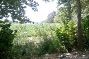 قواره های 1000 متری باغچه در ملارد