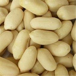 فروش بادام زمینی آستانه - 1