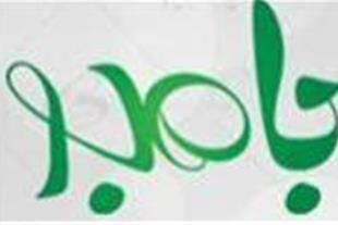 گروه شرکت های تبلیغاتی بامبو