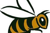 پوشش عایق زمستانی کندوی زنبور عسل