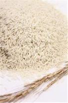 فروش برنج آستانه اشرفیه