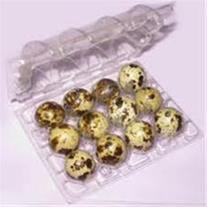 ظرف بسته بندی تخم خوراکی و شانه دستگاه جوجه کشی