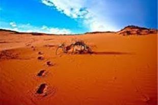 تور کویر مصر زمستان 93