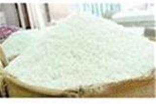 فروش برنج هاشمی درجه یک فوق اعلا  گیلان
