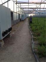 فروش سازه گلخانه اسپانیایی دست دوم در حد نو