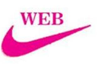 طراحی سایت فروشگاه اینترنتی در تبریز - 1
