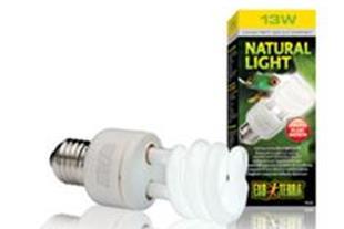 NATURAL LIGHT-نور طبیعی
