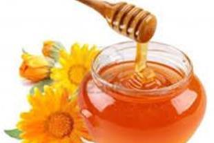 فروش عمده انواع عسل وروغن حیوانی پلمپ