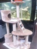 پارک گربه