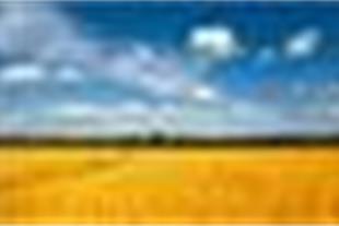 فروش زمین با موقعیت عالی