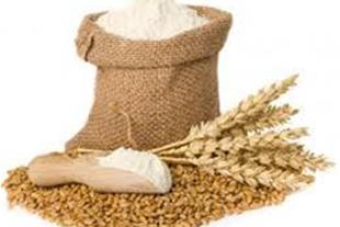 واردات ماشین آلات خط تولید آرد
