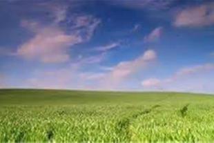 فروش زمین 45 هکتاری در بهشهر