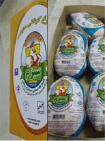 تولید و فروش مرغ منجمد و مرغ کشتار روز
