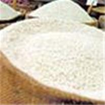 خرید برنج منطقه دابودشت