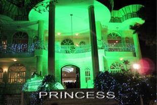 تدارکات عروسی پرنسس