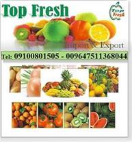 صادرات میوه از کشاورزان به عراق