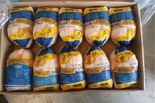 فروش مرغ منجمد صادراتی