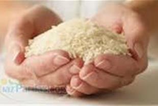 (برنج درجه یک هاشمی آستانه اشرفیه) تضمینی