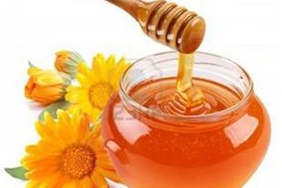 فروش تخصصی عسل هگمتانه