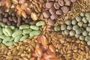 فروش انواع نهاده های دامی (گندم، جو، ذرت، کنجاله