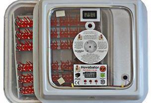 تولید کننده دستگاه جوجه کشی خانگی