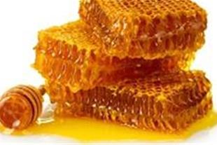 فروش عسل طبیعی با کیفیت