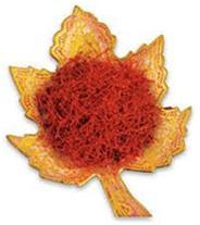 فروش زعفران عمده و خرده در رشت