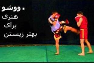 آموزش خصوصی ورزش رزمی ووشو در مشهد