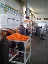 فروش استثنایی کارخانه تولید اسنک کرانچی و پاپکرن