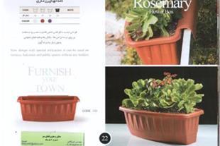 گلدان رزماری گلپونه-مخصوص تراسgiahiran.com