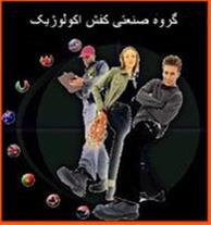 کفش ایمنی کرمانی در سایت www.4059.ir - 1
