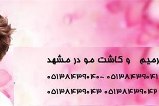 ترمیم مو شقایق کاشت مو در مشهد