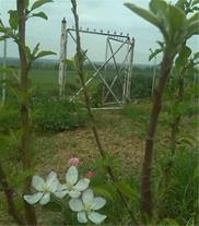 باغ زیبا در گرگان - شموشک