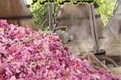 سازنده دیگهای  گلاب گیری سنتی و دیگ گلابگیری صنعتی