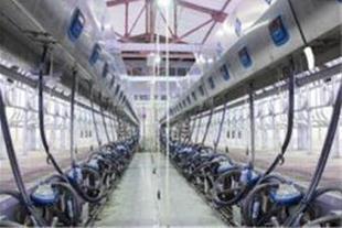 فروش و نصب انواع قطعات دستگاههای شیردوشی