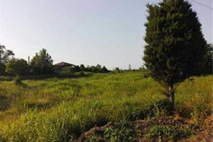 زمین 7500 متری با 2500 متر کاربری مسکونی درحسن سرا