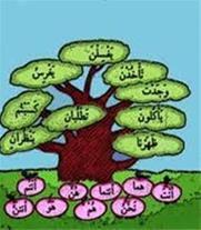 تدریس خصوصی عربی دبیرستان و کنکور -تبریز