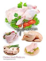 پخش عمده مرغ کشتار روز هر کیلو 400زیر قیمت کشتارگا - 1